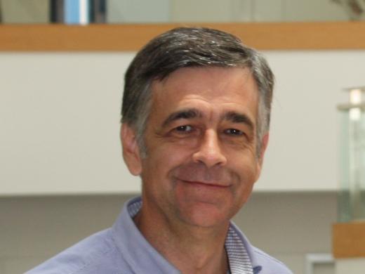 José Antonio Medina Carmona, Director Gerente
