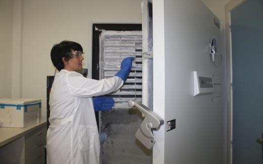 Gestión de muestras biológicas del material de Biobanco