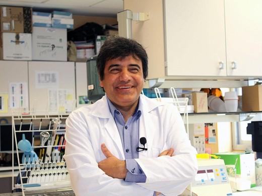 Francisco Tinahones es Director de la UGC de Endocrinología y Nutrición