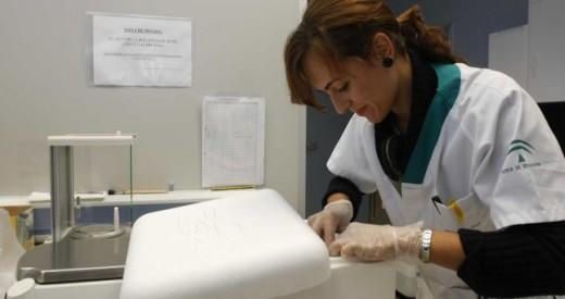 Una de las investigadoras en el el laboratorio del Clínico