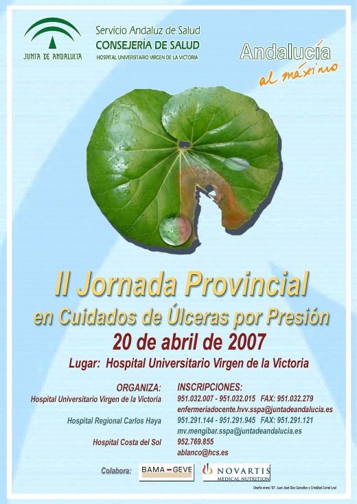 Cartel de la II Jornada Provincial en cuidados de úlceras por presión